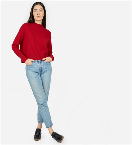 Everlane Cashmere Crop Mock Neck Sweater